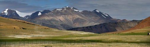 Valli dell'alta montagna: in priorità alta c'è un pascolo verde dell'altopiano, nel fondo là è picchi enormi, i picchi è coperto Immagini Stock Libere da Diritti