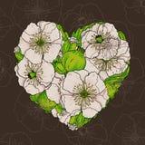 Vallmo blommar hjärta Fotografering för Bildbyråer