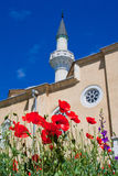 Vallmoblommor och moskéminaret Arkivbild