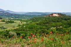Vallmor i Provence Royaltyfri Bild