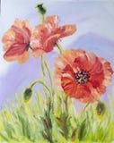 Vallmor oljemålning på kanfas Royaltyfria Bilder