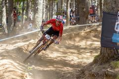 ONDREJ CINK CZE in the MERCEDES-BENZ UCI MTB WORLD CUP 2019 - XCO Vallnord, Andorra on July 2019 royalty free stock photos