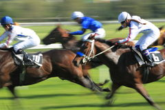 Valmont in horse racing in Prague Stock Photography
