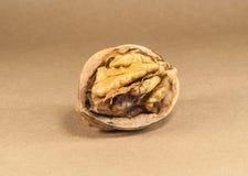 Valnötkärnor och hela valnötter på kraft papper arkivbilder