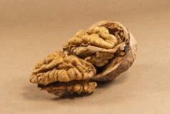 Valnötkärnor och hela valnötter på kraft papper royaltyfri foto