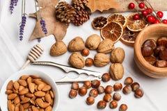 Valnötter, hasselnötter, mandlar och nötknäppare Royaltyfri Fotografi