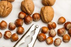 Valnötter, hasselnötter och nötknäppare Royaltyfria Bilder