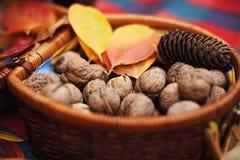 Valnötter i en korg royaltyfria bilder