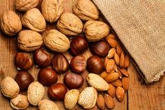 Valnötter, kastanjer och mandlar Arkivfoto