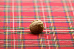 Valnötter mandlar, hasselnötter, jordnötmuttrar på vit röd rutig tygbakgrund Fotografering för Bildbyråer