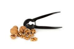 Valnötter med en nötknäppare på en vit bakgrund Royaltyfri Foto