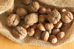 Valnötter och hasselnötter i en jutesäck Royaltyfri Bild
