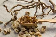 Valnötter på en sked Arkivbild