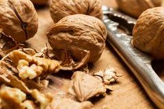 Valnötter, skalade valnötter och nötknäppare Royaltyfri Bild