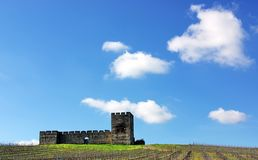 Valongo castle, Alentejo, Portugal. Royalty Free Stock Images