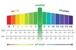 Valor de escala del pH, aislado Foto de archivo libre de regalías