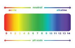 Valor de escala del pH, aislado Fotografía de archivo