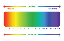 Valor de escala do PH, isolado Fotografia de Stock
