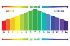 Valore della scala di pH, isolato illustrazione di stock