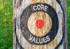 Valores do núcleo - árvore com alvo na floresta imagens de stock