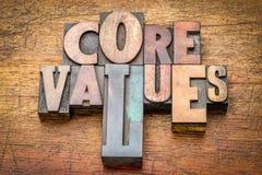Valores do núcleo - exprima o sumário no tipo de madeira imagens de stock royalty free