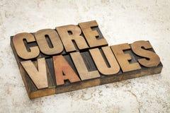 Valores do núcleo no tipo de madeira Fotografia de Stock