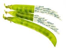 Valores nutritivos dos chícharos das ervilhas verdes, dos petipuas, de macios e de muito frescos com gotas da água imagens de stock royalty free