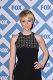 Valorie Curry Stock Photos