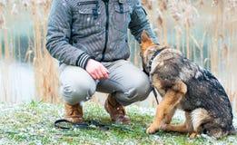 Valp för tysk herde med ägaren på vintern arkivbild