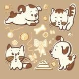 Valpar och kattungar Arkivbild