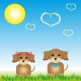 Valpar som sitter på gräset med solen Vektor Illustrationer