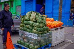 VALPARAISO, CHILE - SEPTEMBER, 15, 2018: Unidentified man with a pile of sacs of coals and fruits in a street next to. The historic market in Valparaiso, Chile royalty free stock photos