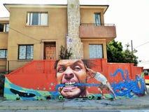 Valparaiso konst Royaltyfri Bild