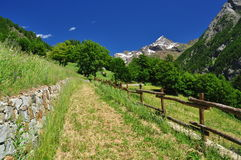 Valpelline, Aosta Valle, Italy. Hiking trail in sunshine Royalty Free Stock Images