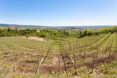 Valpolicella hills landscape, Italian viticulture area, Italy. Rural landscape gargagnago santambrogio di valley agriculture blue country countryside farming royalty free stock image