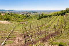 Valpolicella hills landscape, Italian viticulture area, Italy. Rural landscape gargagnago santambrogio di valley agriculture blue country countryside farming royalty free stock photo