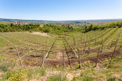 Valpolicella hills landscape, Italian viticulture area, Italy. Rural landscape gargagnago santambrogio di valley agriculture blue country countryside farming royalty free stock images