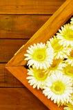 Vals bloemkader Royalty-vrije Stock Afbeelding