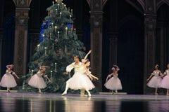 Vals de los copos de nieve el segundo reino del caramelo del campo del acto segundo - el cascanueces del ballet Imagen de archivo