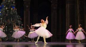 Vals de los copos de nieve el segundo reino del caramelo del campo del acto segundo - el cascanueces del ballet Imagenes de archivo