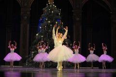 Vals de los copos de nieve el segundo reino del caramelo del campo del acto segundo - el cascanueces del ballet Fotografía de archivo