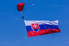 Valschermjager met vlag Royalty-vrije Stock Foto
