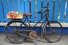 Valse bloem op fiets royalty-vrije stock foto