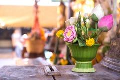 valse bloem in pot royalty-vrije stock foto