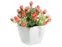 Valse bloemen Stock Fotografie