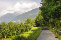 Valtellina, carril del ciclo imagenes de archivo