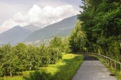 Valtellina, pista do ciclo imagens de stock