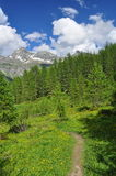 Valtournenche, Aosta Valle, Italia Traccia di escursione in sole Immagini Stock