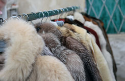 Valuable fur coat in vintage style in the flea market Stock Images