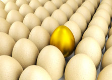Valuable golden egg Royalty Free Stock Image